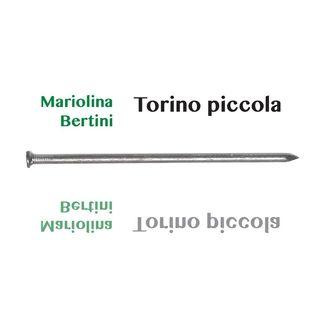 "Mariolina Bertini ""Torino piccola"""
