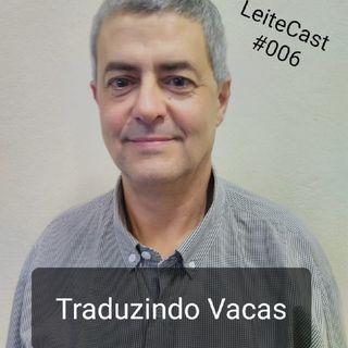 #006 Traduzindo Vacas   Com Marcelo Cecim