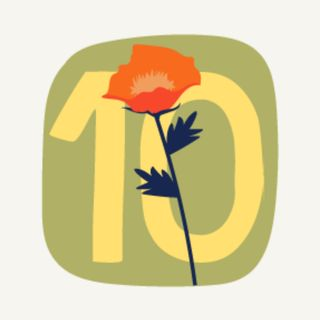 10 maggio: Il tesoro