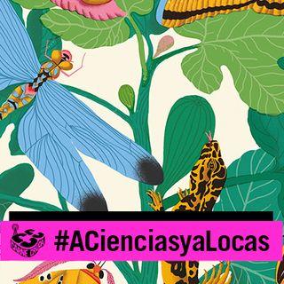 Carne Cruda - El lenguaje secreto de las plantas y los animales (A CIENCIAS Y A LOCAS #777)