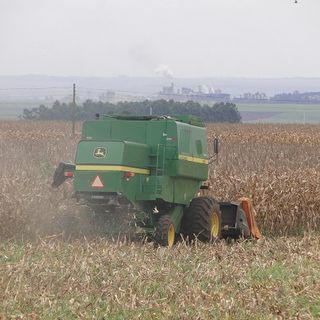 Colheita de milho bate recorde no Paraná