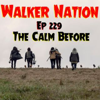 "Ep 229 ""The Calm Before"" TWD 915"