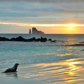 Galapagos - Darwin'e İlham Veren Adalar!