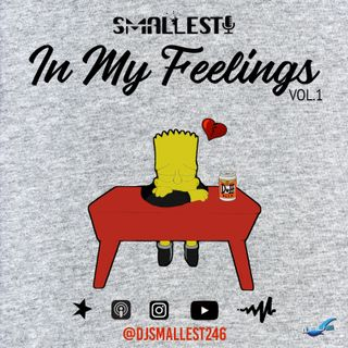 IN MY FEELINGS MIX VOL.1 | DJ SMALLEST