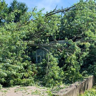 Cleanup Underway After Severe Thunderstorms Hit Attleboro, Rehoboth