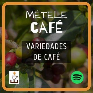 Episodio 3 - Variedades del café
