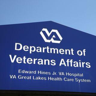 VA Head: We're Hampered By Regulations