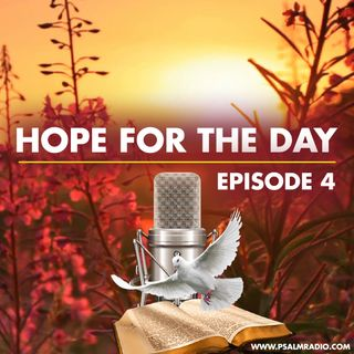 Hope for the Day (Matthew 7:7) Ep 4