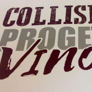 """Fabrizio Pagella """"Collisioni. Il Festival Agri Rock"""""""