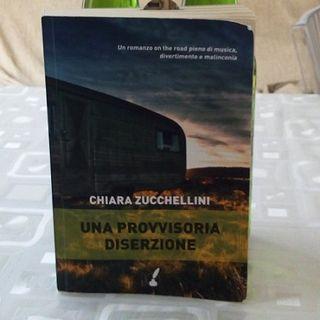 Un viaggio in Italia al suono dei Ramones: Una Provvisoria Diserzione di Zucchellini