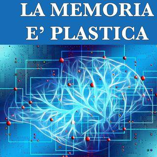 La memoria è plastica.