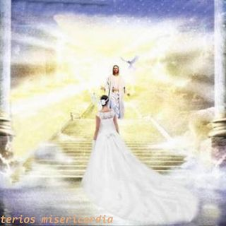 The Invitation Leaving All to Follow Christ