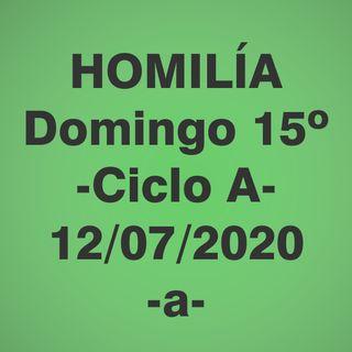 Homilía - Domingo 15 - 12 jul 2020 -1