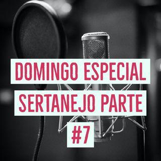 DOMINGO ESPECIAL- Seleção com as MELHORES Musicas SERTANEJO /2020 #Parte 7