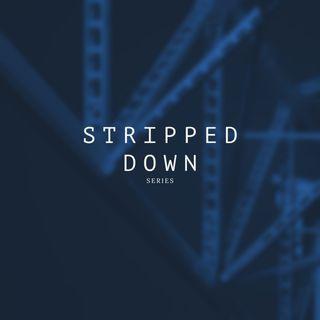 Stripped Down Volume 01 - Minimal Micro Tech Modular Rollin House