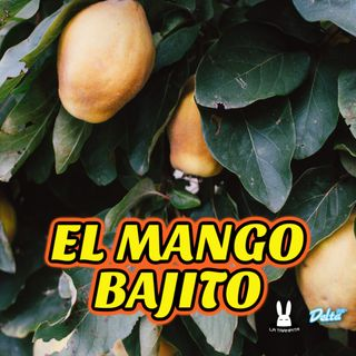 EP40. EL MANGO BAJITO