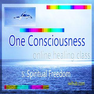 One Consciousness 5: Spiritual Freedom