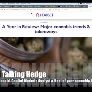 Major Cannabis Trends & Takeaways (2020)