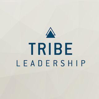 TRIBE LEADERSHIP Vortrag 15.Okt.2020 - Axel Neo Palzer