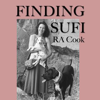 • 03 Finding Sufi