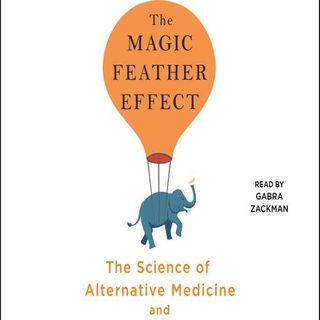 Melanie Warner Releases The Magic Feather Effect