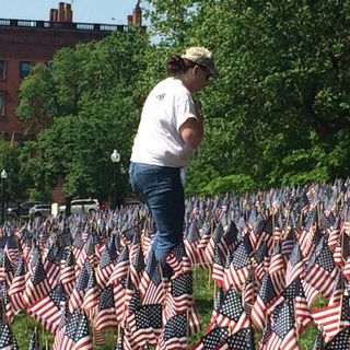 Volunteers Plant 37,000 Flags On Boston Common To Honor Veterans