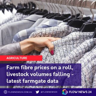 Farmgate price positives for wool, cattle - latest update
