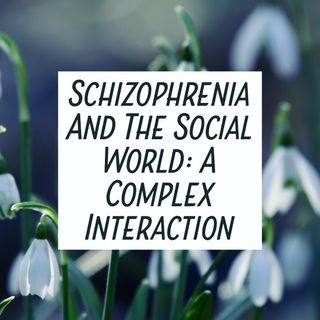 Schizophrenia and the Social World: a Complex Interaction