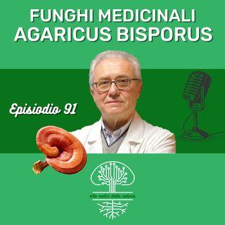 Funghi Medicinali: AGARICUS BISPORUS