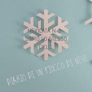 Nevicata n. 2: sotto lo stesso cielo