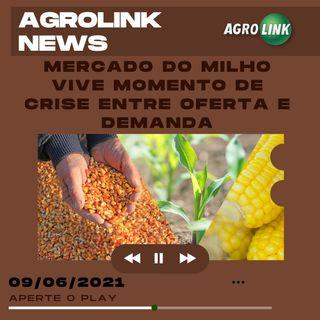 Podcast: Mercado do milho vive momento de crise entre oferta e demanda