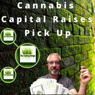 Cannabis Capital Raises Pick Up