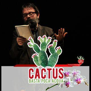 Cactus #27 - Il nostro pescetto d'Aprile - 01/04/2021
