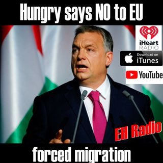 Morning Moment Hungry says NO to EU Feb 9 2018