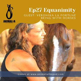 ANIMALIA 27 - Equanimity - 9Jul21
