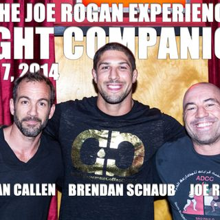 Fight Companion - July 7, 2014