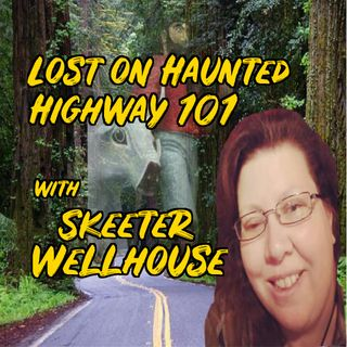 Sketter Wellhouse  Haunted Highway 101