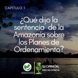 La sentencia de la Amazonía