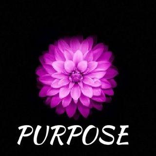 PURPOSE IN LIFE❣️
