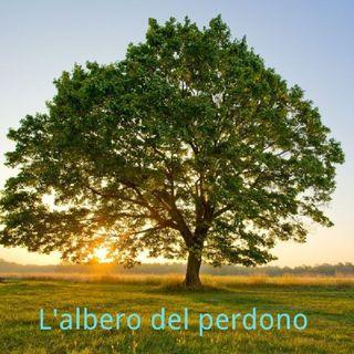 L'albero del perdono
