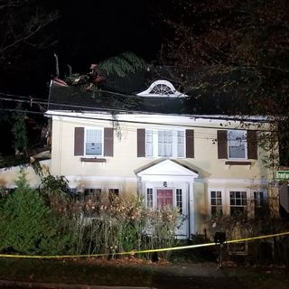 Tree Smashes Through Roof Of Newton Home