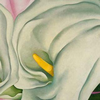 Georgia O'Keeffe - I suoi fiori. Sensualità e mistero