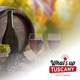 Under the sea or in a can? The weird future of Tuscan wine - Ep. 28