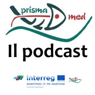 L'esperienza Prismamed: come creare un circuito virtuoso per la gestione dei rifiuti e degli scarti in mare