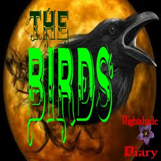 The Birds | Suspense Story | Podcast