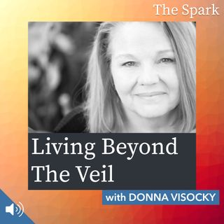 The Spark 074: Living Beyond the Veil with Donna Visocky