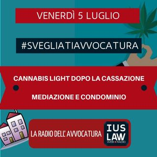 CANNABIS LIGHT DOPO LA CASSAZIONE – MEDIAZIONE E CONDOMINIO #SvegliatiAvvocatura