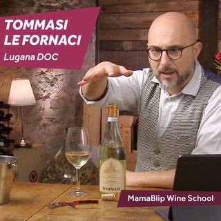 Lugana   Tommasi - Le Fornaci   Wine Tasting with Filippo Bartolotta