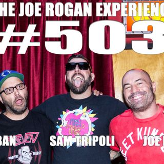 #503 - Sam Tripoli