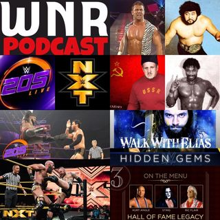 WNR170 WWE NETWORK REVIEW AUGUST